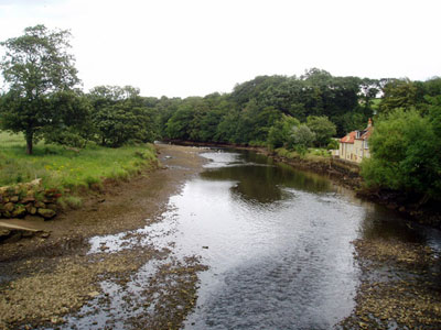 River Esk Ruswarp North R